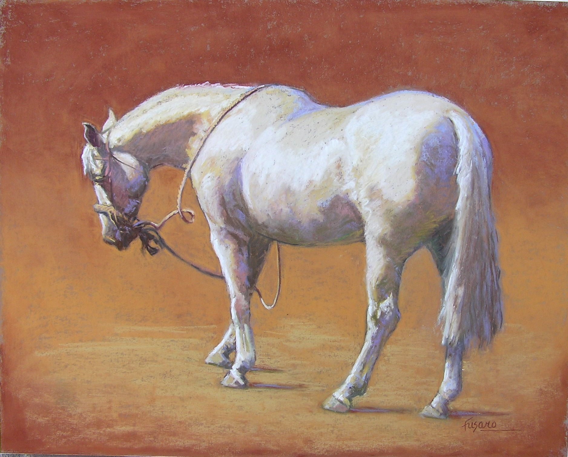 A White Horse Waiting