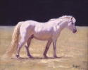 The White Pony • SOLD