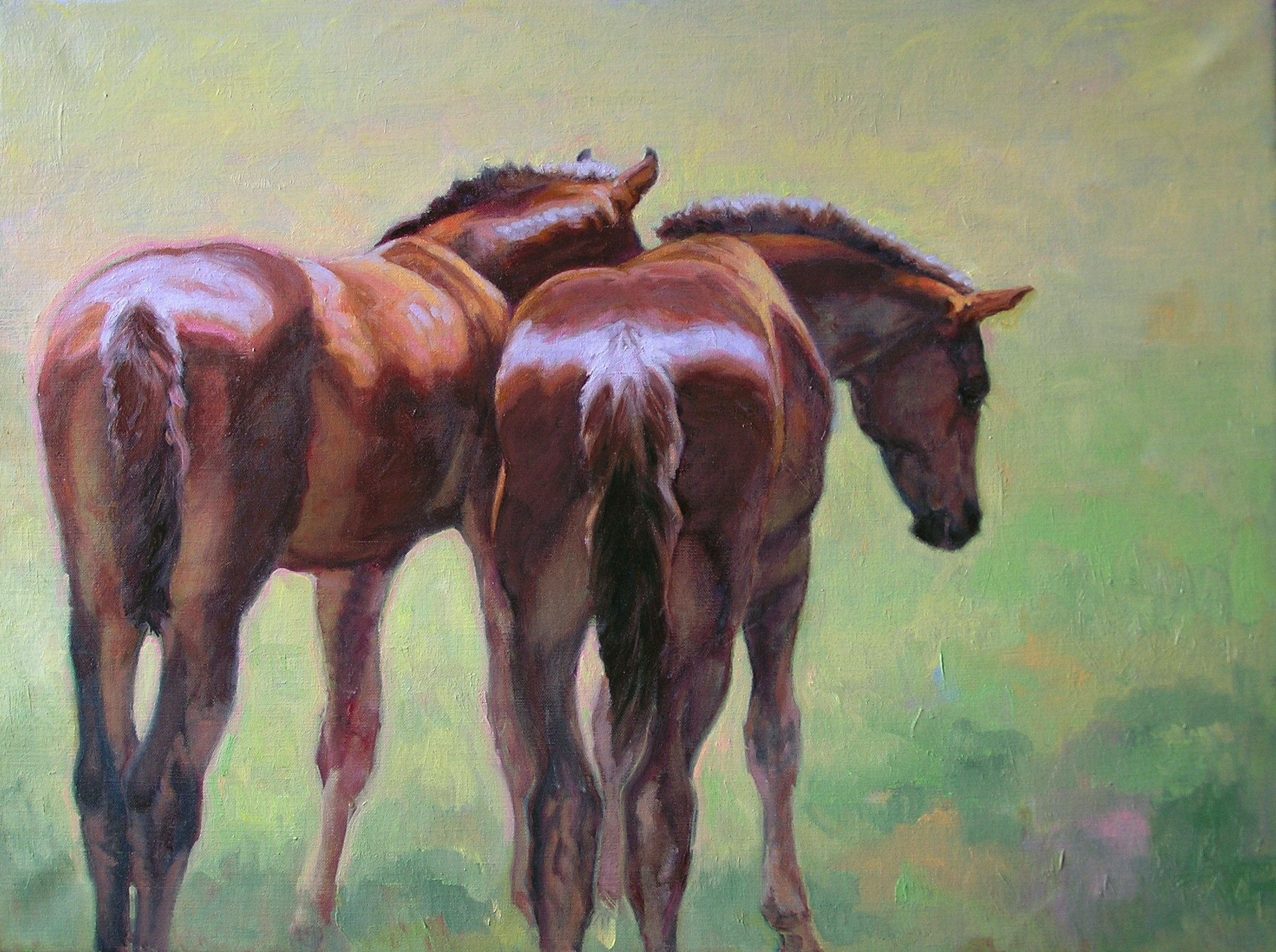 Two Bay Colts • SOLD