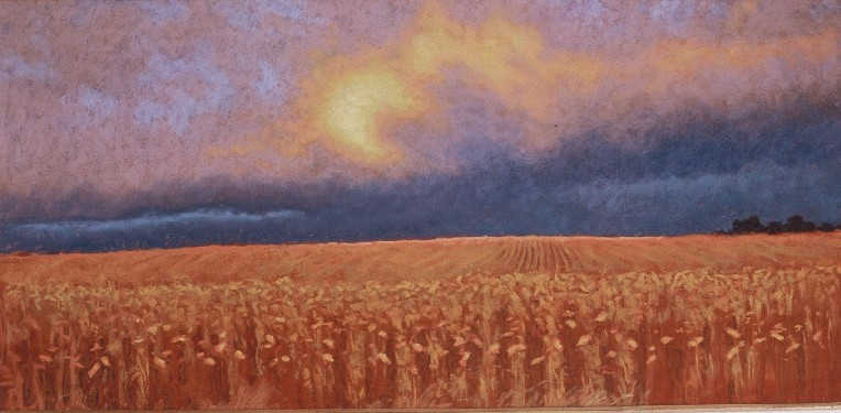 November Cornfields • SOLD