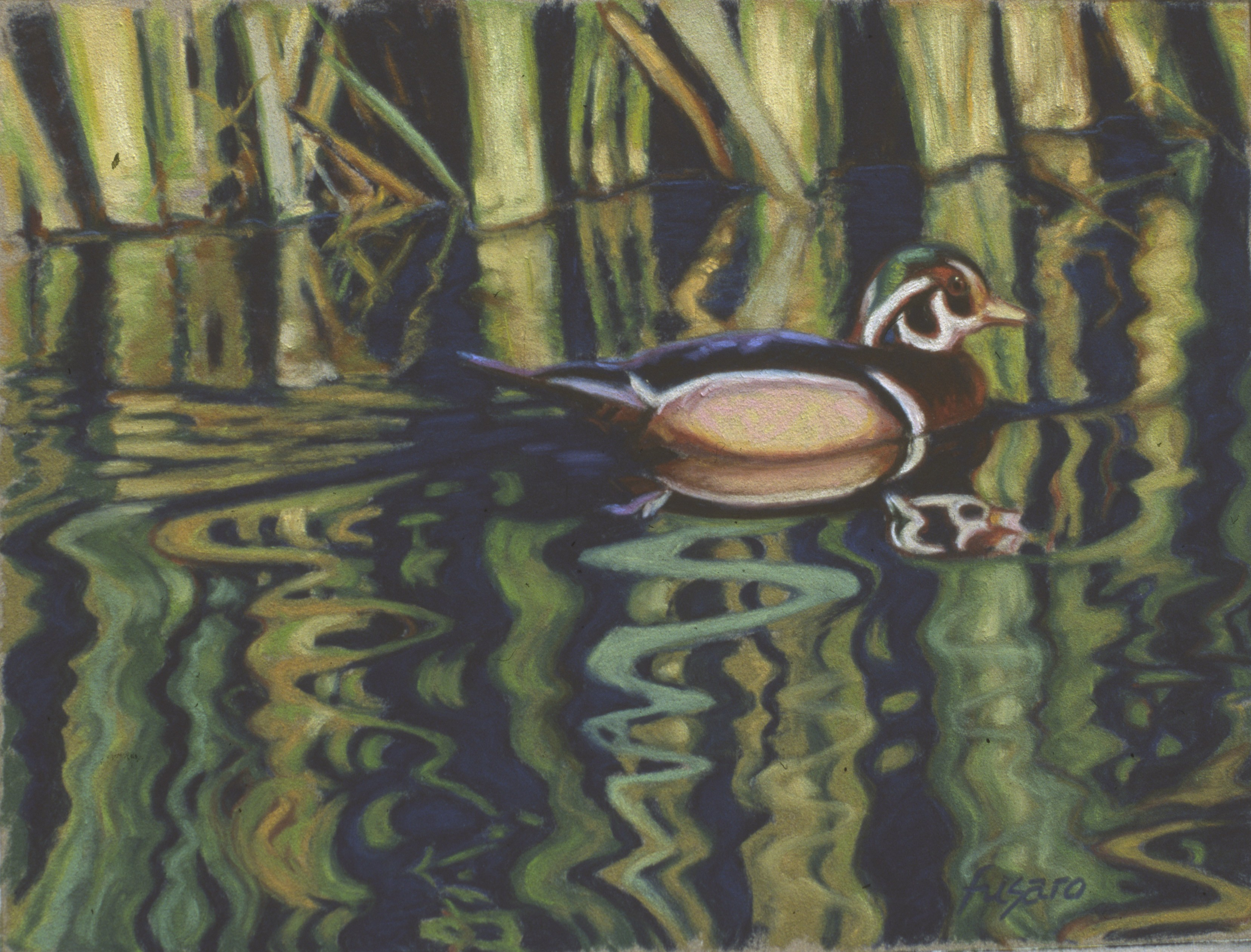 Wood Duck • SOLD